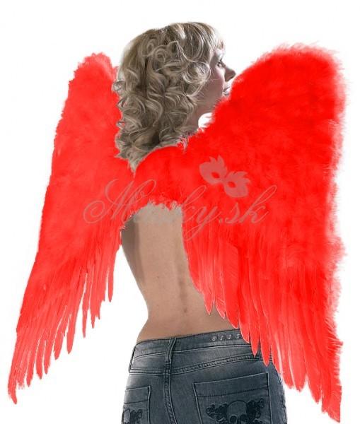 Křídla andělské 0100252