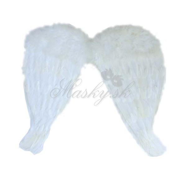 Křídla andělské malé 22010