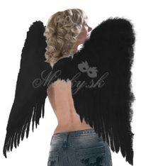 Křídla Andělské 0100251