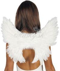 Křídla andělské 17368