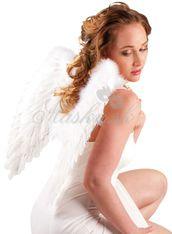 Křídla andělské 52798