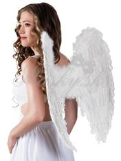 Křídla andělské 52801