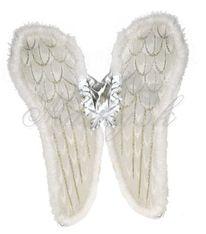 Křídla andělská 53452